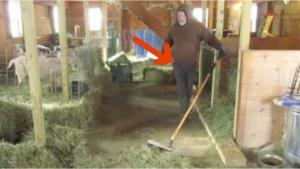 Image illustrant l'article À 0:35, impossible de ne pas sourire devant cet homme qui balaie sa grange...