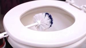 Image illustrant l'article Pendant 10 Minutes, Elle Coince Sa Brosse Sur La Toilette. Il Suffisait d'y Penser, Et Pourtant C'est Évident!