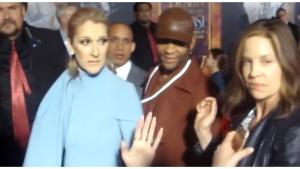 Image illustrant l'article Quand Céline Dion remet proprement un journaliste à sa place... Normal que ça fasse le tour du monde !
